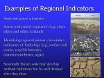 examples of regional indicators1
