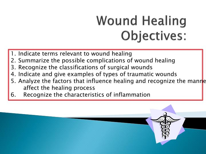 PPT - Wound Healing Objectives: PowerPoint Presentation - ID