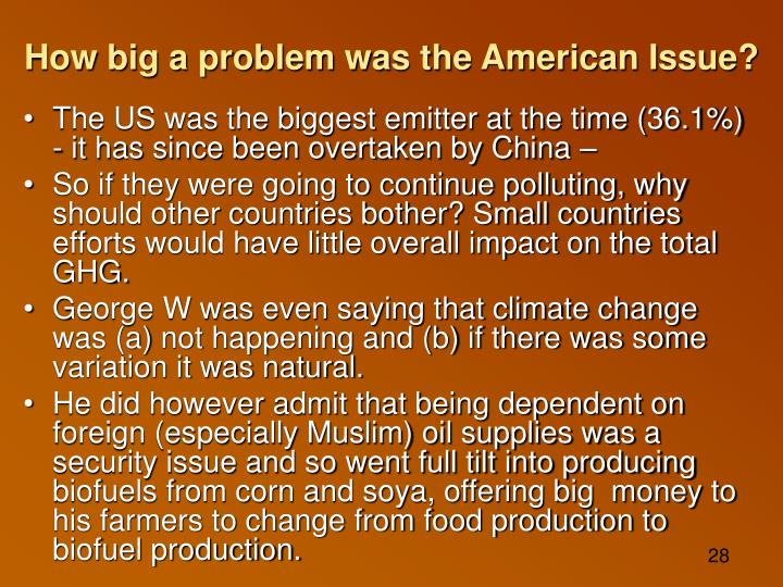 How big a problem was the American Issue?