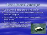 focal species campaigns