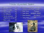 focal species team