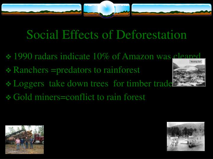 essay on causes and effects of deforestation Short essay on deforestation related essays: what are the causes and effects of deforestation useful notes on 9 main concomitant effects of deforestation.