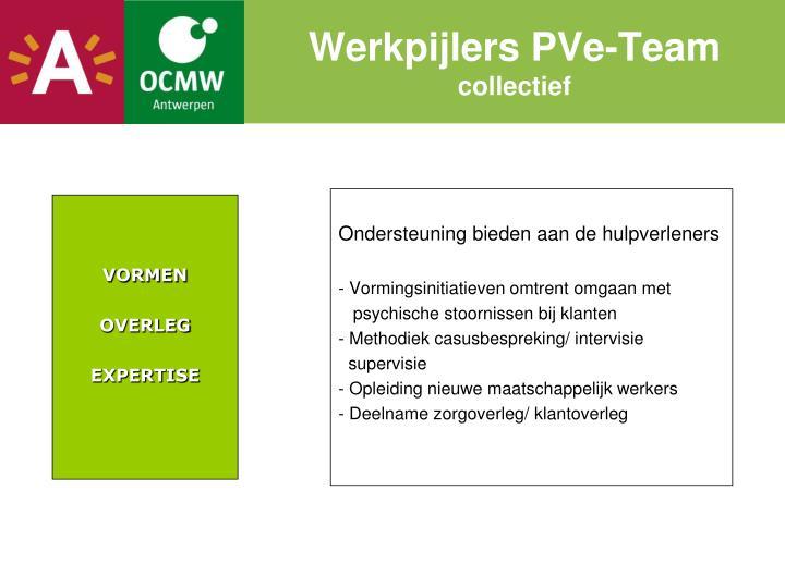Werkpijlers PVe-Team