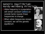 genetic equilibrium hardy weinberg principle