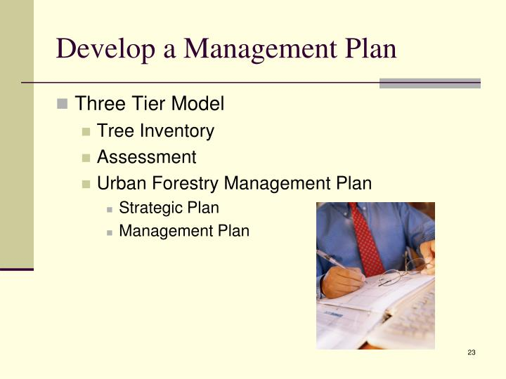 Develop a Management Plan
