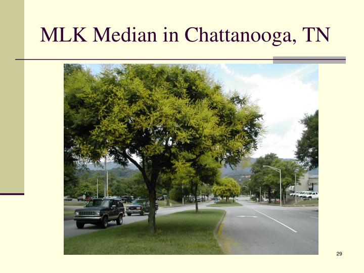 MLK Median in Chattanooga, TN
