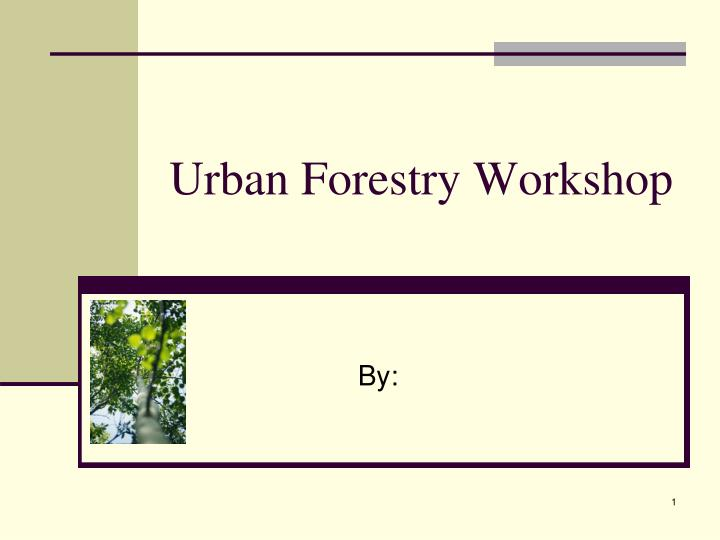 Urban forestry workshop