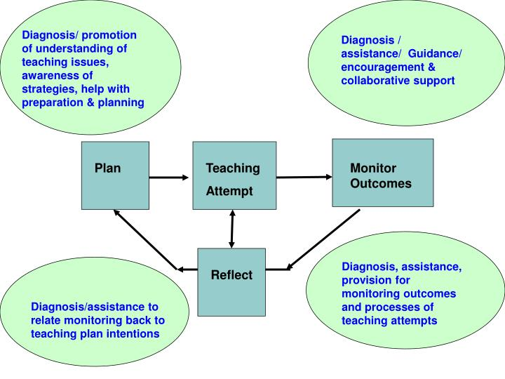 Diagnosis/ promotion of understanding of teaching issues, awareness of strategies, help with preparation & planning