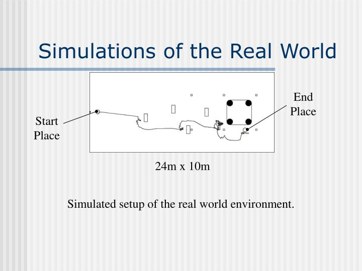 Simulations of the Real World