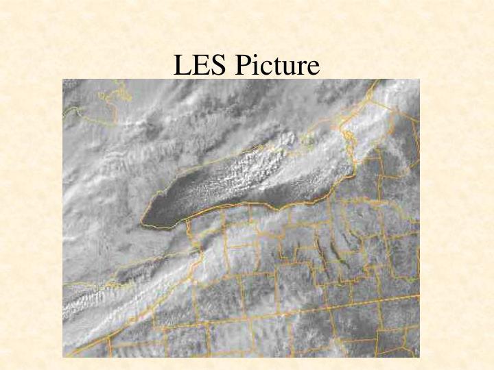 LES Picture