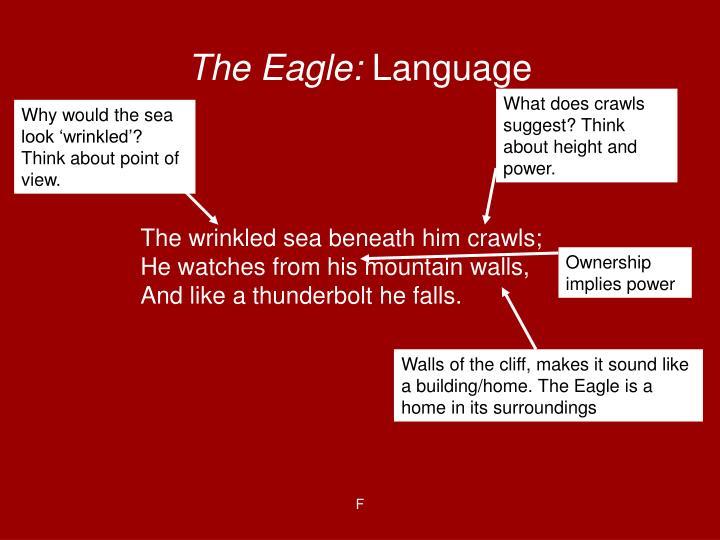 The Eagle: