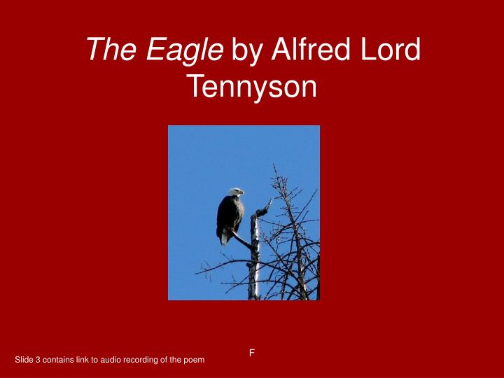 eagle alfred lord tennyson essay Alfred tennyson, 1st baron tennyson, frs (6 august 1809 - 6 october 1892) was poet laureate of the united kingdom during much of queen victoria's reign and remains one of the most popular poets in the english language tennyson excelled at penning short lyrics, such as in the valley of.