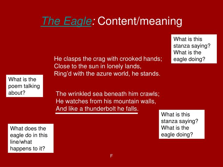 The eagle content meaning