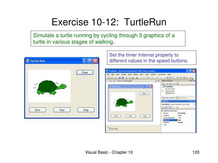 Exercise 10-12:  TurtleRun