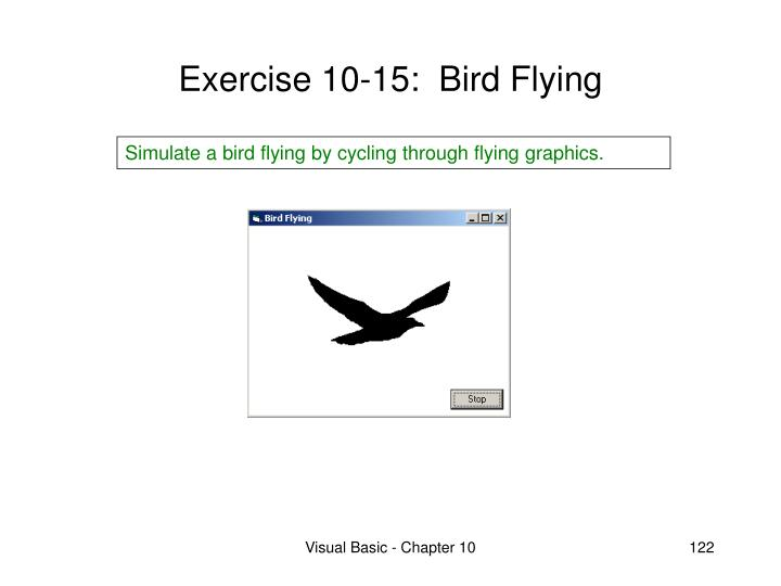 Exercise 10-15:  Bird Flying
