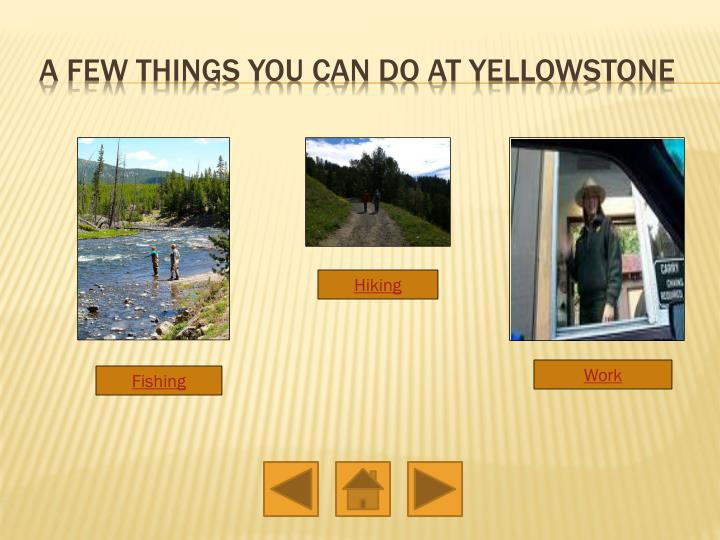 A few things you can do at yellowstone