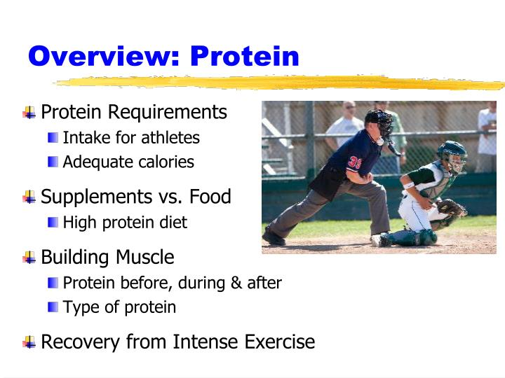 Overview protein