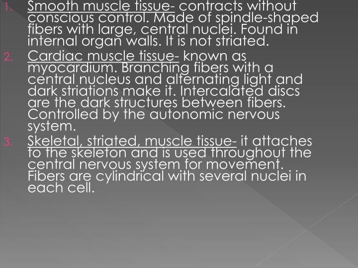 Smooth muscle tissue-