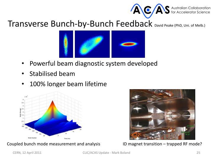 Transverse Bunch-by-Bunch Feedback