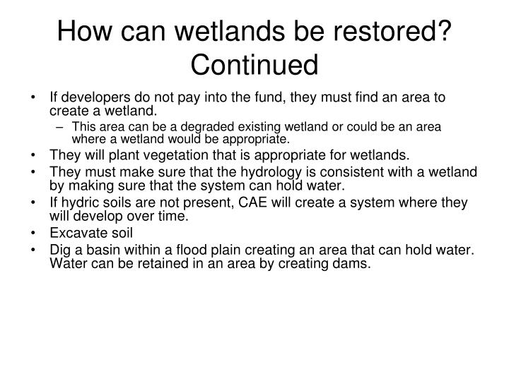 How can wetlands be restored? Continued