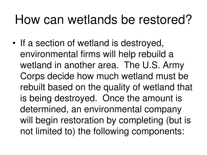 How can wetlands be restored?