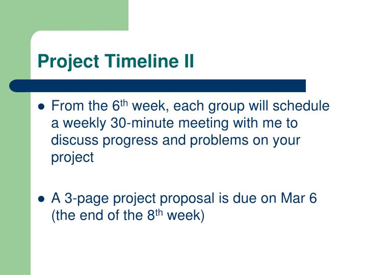 Project Timeline II