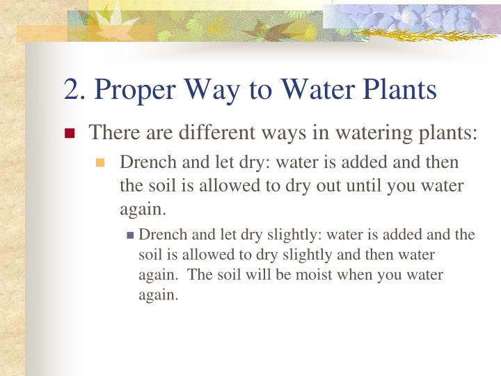 2. Proper Way to Water Plants