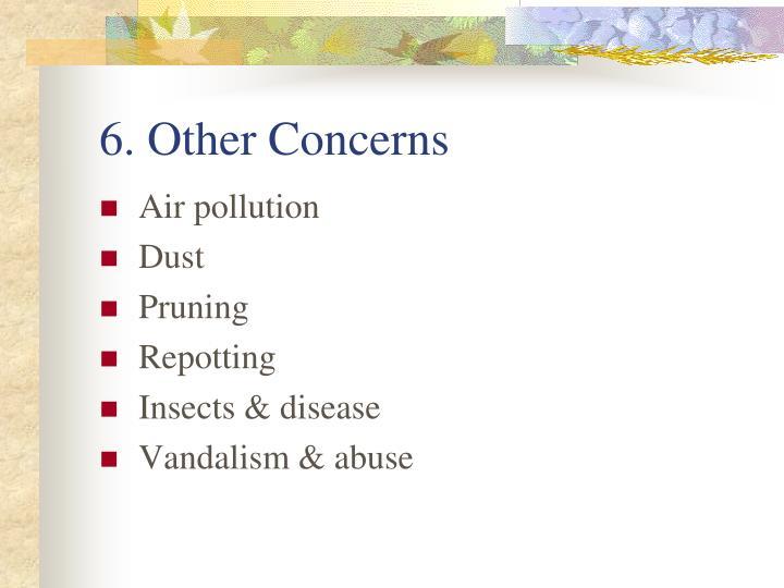 6. Other Concerns