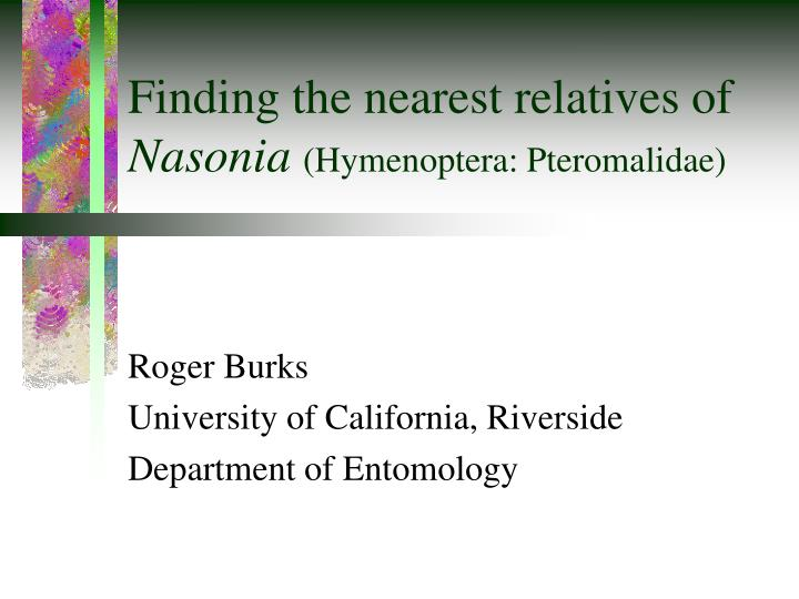 Finding the nearest relatives of nasonia hymenoptera pteromalidae