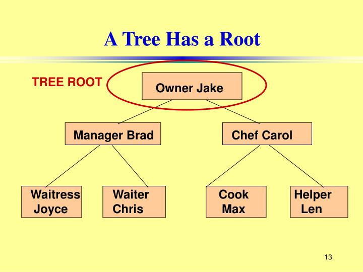 A Tree Has a Root