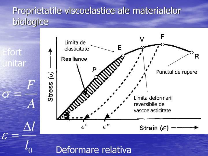 Proprietatile viscoelastice ale materialelor biologice