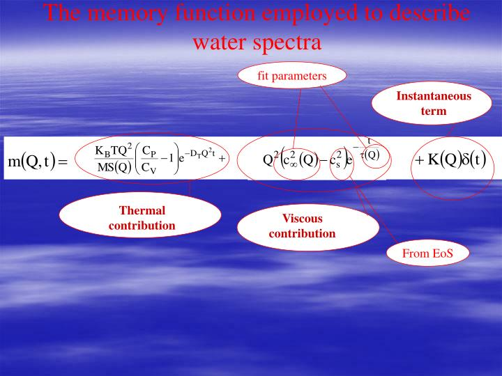 The memory function employed to describe water spectra