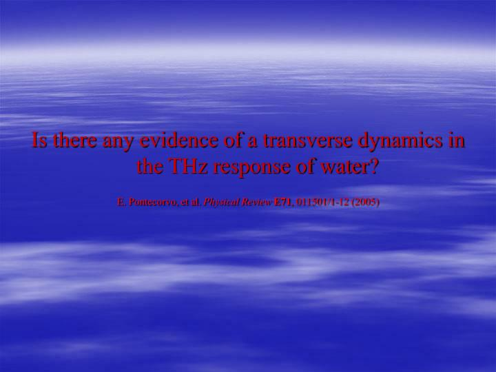 Is there any evidence of a transverse dynamics in the THz response of water?