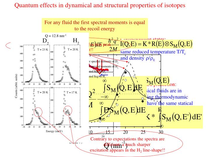 Quantum effects in dynamical and structural properties of isotopes