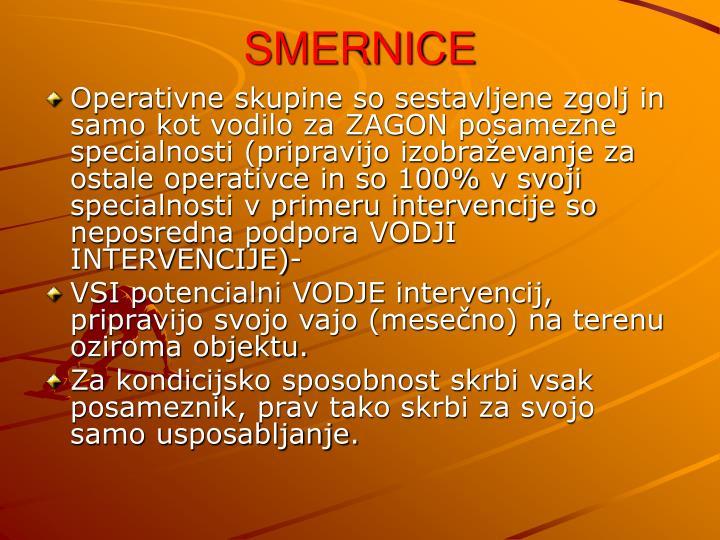 Smernice