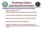 facilitated online learning environment