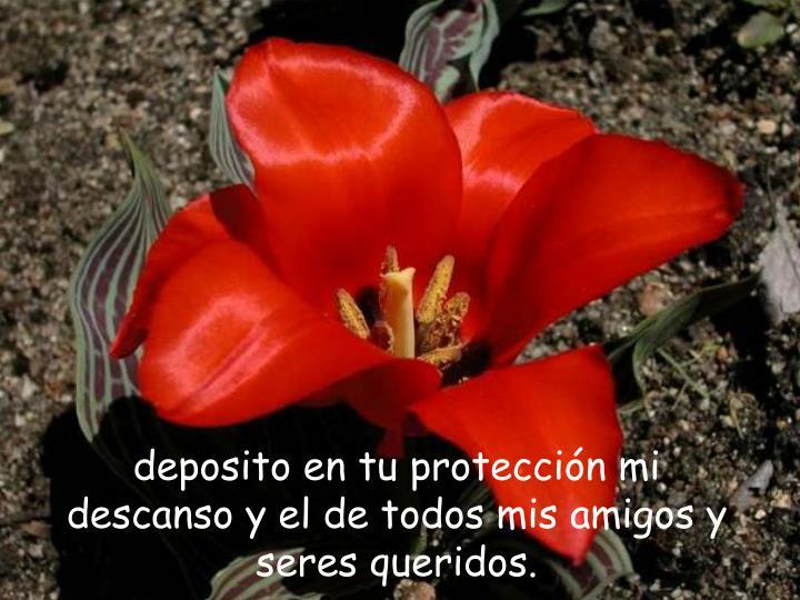 deposito en tu protección mi descanso y el de todos mis amigos y seres queridos.