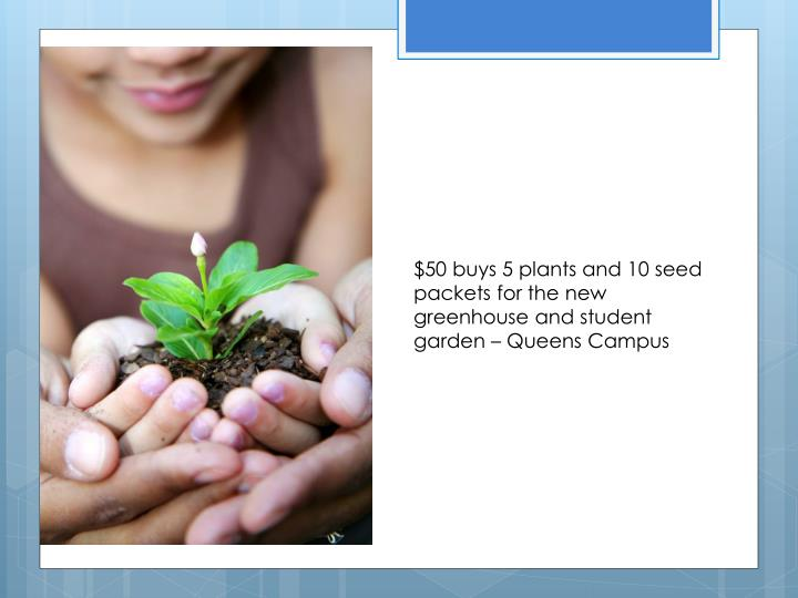 $50 buys 5 plants and 10 seed packets for the new greenhouse and student garden – Queens Campus