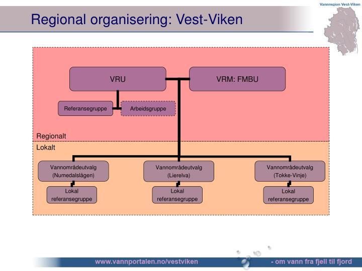 Regional organisering: Vest-Viken