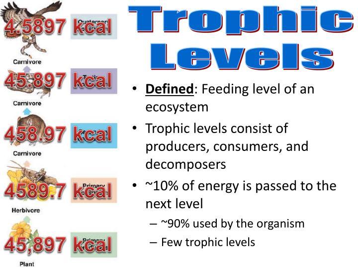 Trophic