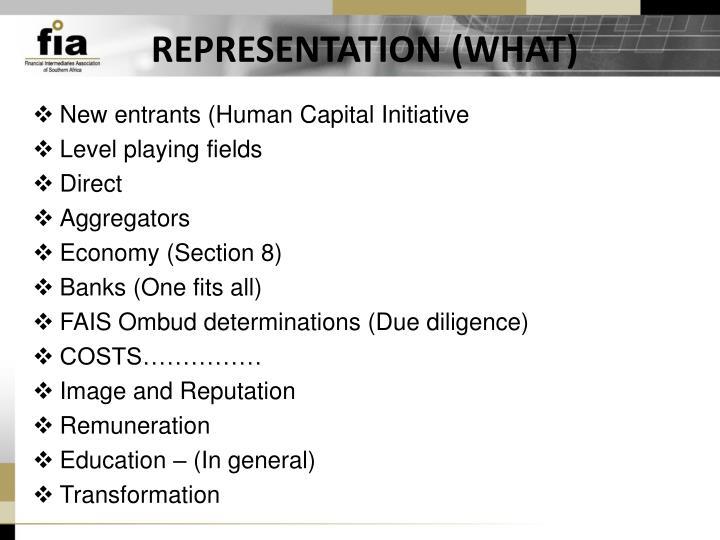 REPRESENTATION (WHAT)