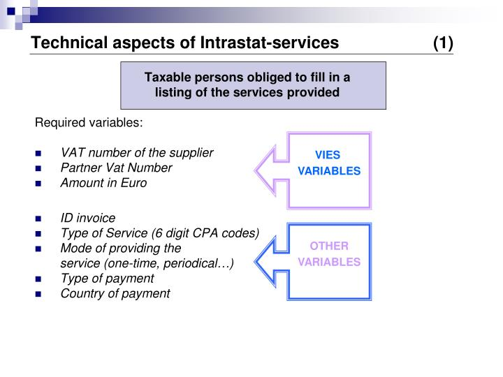 Technical aspects of Intrastat-services       		(1)