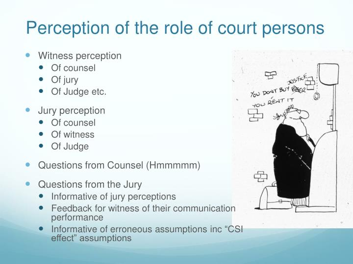 Perception of the role of court persons