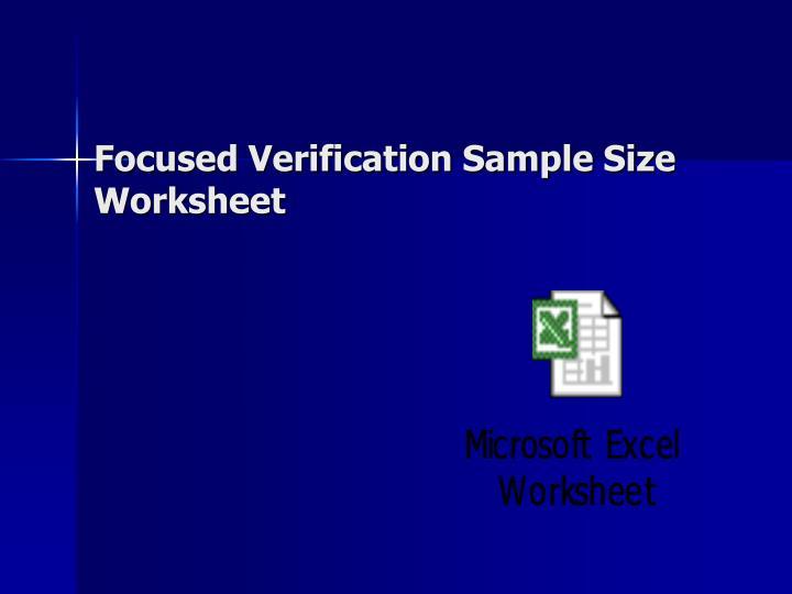 Focused Verification Sample Size Worksheet