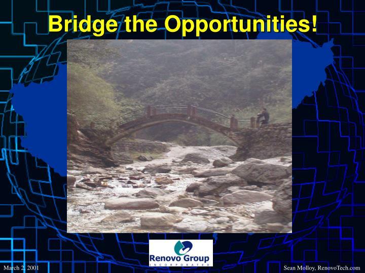Bridge the Opportunities!