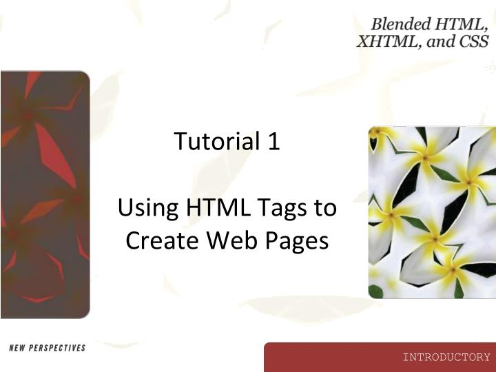 Ppt Tutorial 1 Using Html Tags To Create Web Pages Powerpoint Presentation Id 3002520