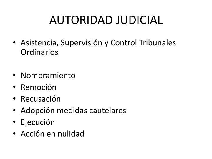 AUTORIDAD JUDICIAL