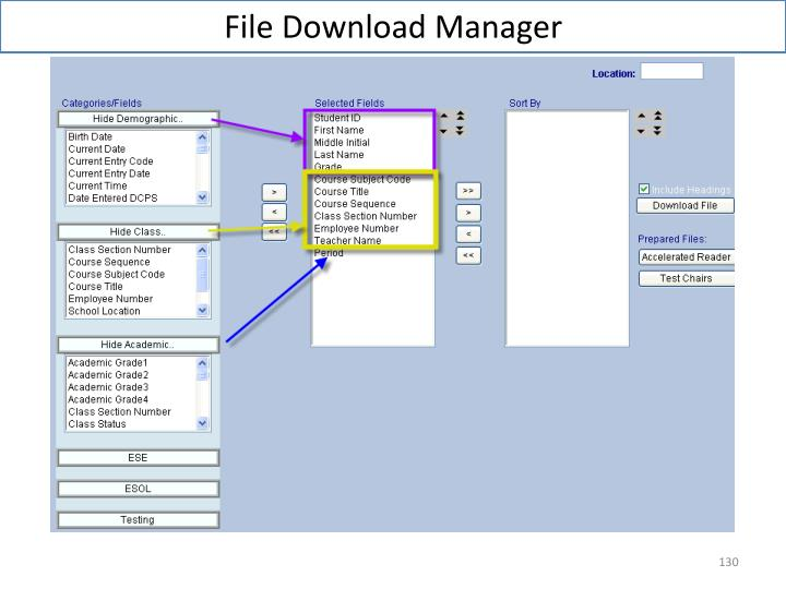 File Download Manager