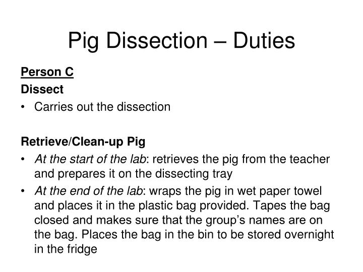Pig Dissection – Duties