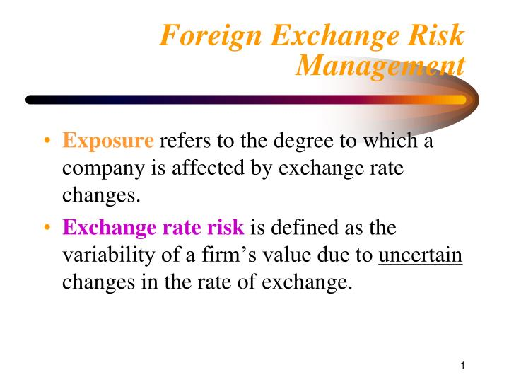 Foreign Exchange Risk Management Exposure Refers To The